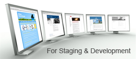 Managed Web Hosting Development Staging Environment