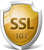 How do SSL's work for my business?