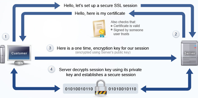 How does an SSL Certificate work?
